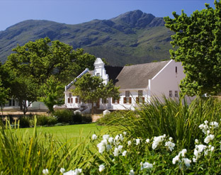 Trip reports - the winelands in the Western Cape